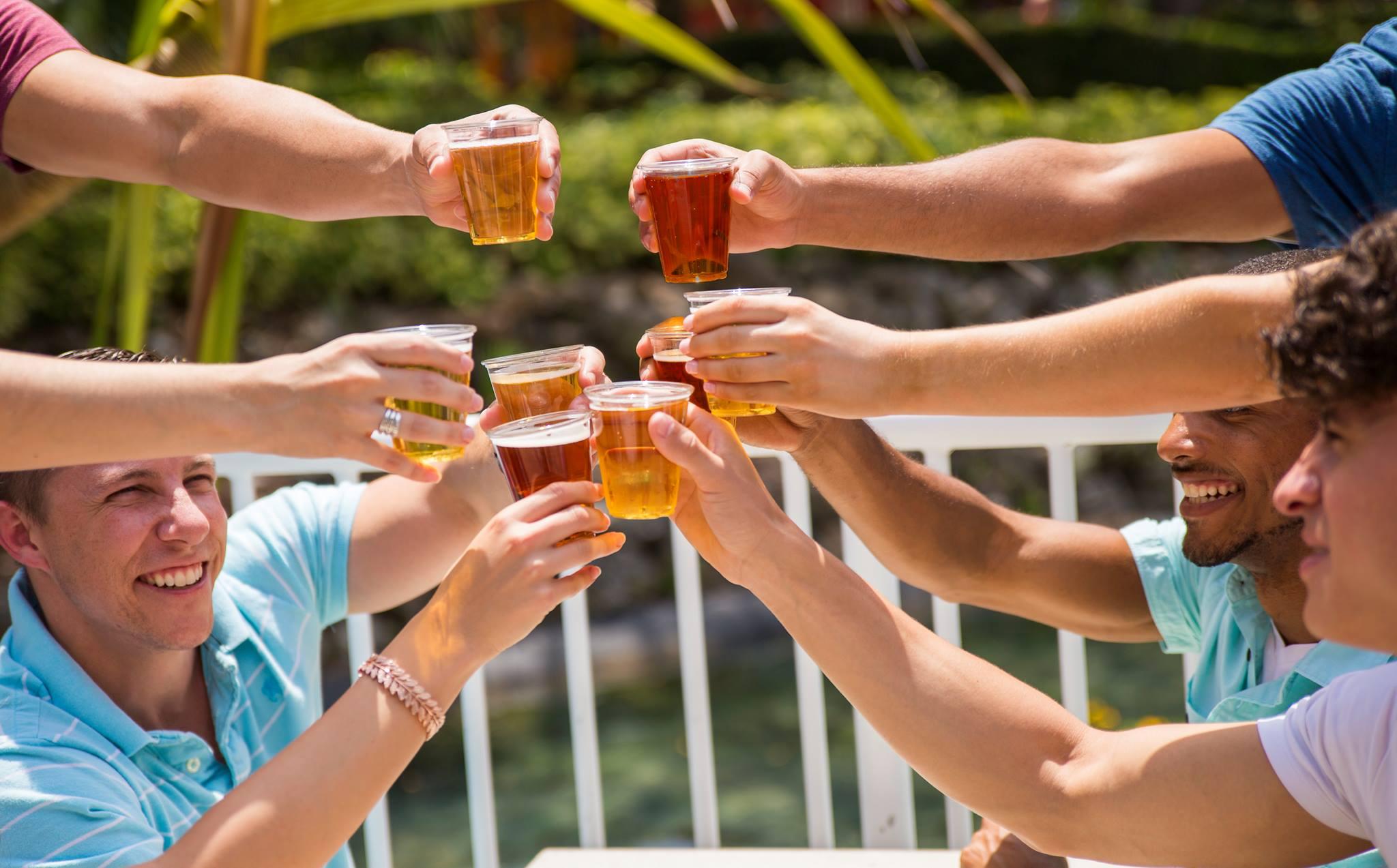 busch gardens tampa bay bier fest beer